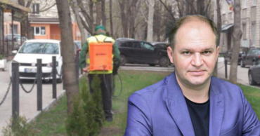 Чебан: В парках начались работы по борьбе с вредителями