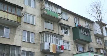 Жительница Кишинева устроила приют кошек и собак в общежитии