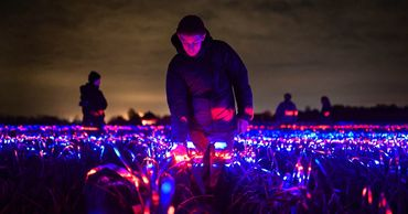 Голландский художник превратил поле лука-порея в световую инсталляцию.