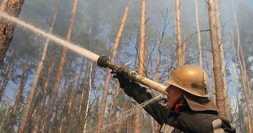 На Украине зафиксировали новые очаги лесных пожаров.