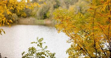 24 октября в Молдове ожидается переменная облачность. Ветер юго-восточный, слабый до умеренного.