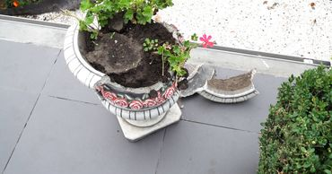 В Бельцах хулиганы разбили цветочные урны у танка.