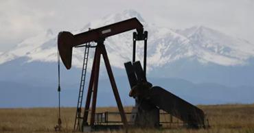 По мнению членов организации, в 2020 году рост добычи сланцевой нефти в США замедлится.
