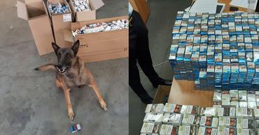 На таможне в Джурджулештах задержан мужчина с десятками тысяч сигарет. Фото: jurnal.md.