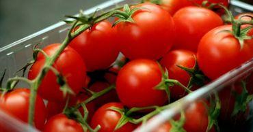 Молдова импортировала помидоры из Украины на 549 тысяч долларов.
