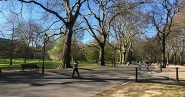 Доктор Комаровский объяснил, почему нельзя на изоляции гулять в парке.