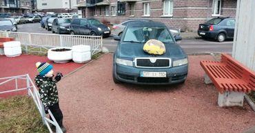 Петербуржцы сурово наказали гостей из Молдовы за неправильную парковку.