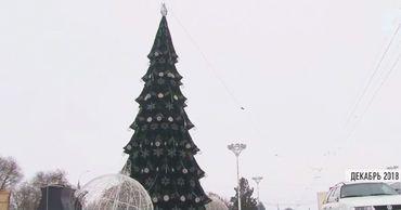 В Тирасполе начали устанавливать ёлку.