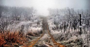 Холодная погода сохранится и в последующие дни.