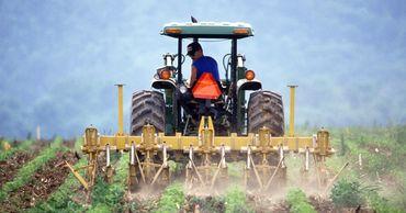 Молодёжь сельскохозяйственного сектора может рассчитывать на финансирование.