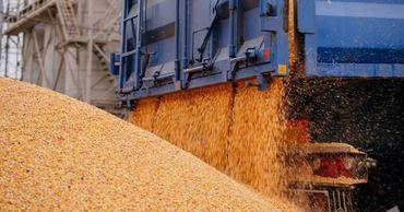 Экспорт кукурузы в последнем квартале 2020 года снизился в 247 раз.