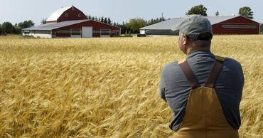 Комитет по экономике одобрил законопроект в поддержку фермеров