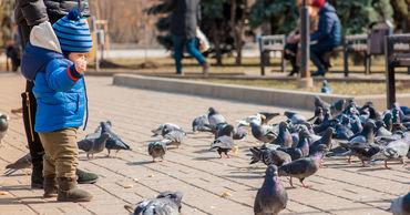 Синоптики прогнозируют на субботу в Молдове до +16 тепла.