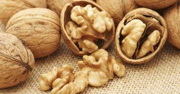 Экспортеры ореха приветствуют участие правительства в решении проблем рынка.
