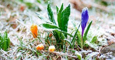 В Молдове ожидаются морозы до -9 градусов.