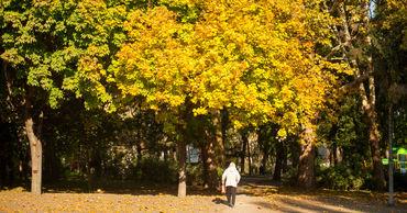 5 ноября в Молдове ожидается переменная облачность. Ветер юго-западный, слабый до умеренного.