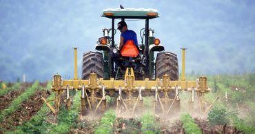 Правительство одобрило ряд поправок закону о принципах субсидирования сельского хозяйства.