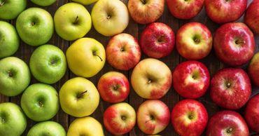 Сербия активно замещает Молдову на рынке яблока России.