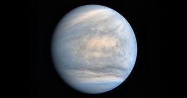Следы жизни обнаружены на Венере.