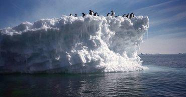 Ледники Антарктиды начали таять три столетия назад.