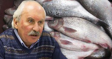 В Молдове продают виды рыб, занесенные в Красную книгу. Фото: Point.md.