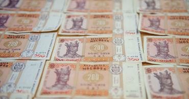 Правительство выделило 700 000 леев на поддержку грантов для молодежи.