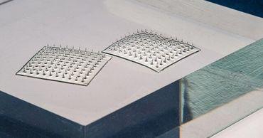 Ученые создали датчик-липучку для проверки качества продуктов.