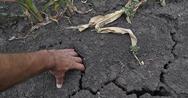 Треть всех засух в Молдове за последние 75 лет произошли после 2000 года.