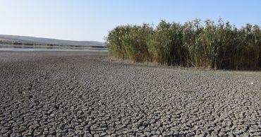 В этом году озеро в селе Конгаз Комратского района сильно пострадало от засухи.
