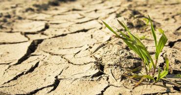 Фермеры отложили посев озимой пшеницы, почва высохла на 2 метра в глубину