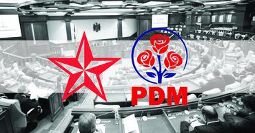 Шелин: Под контролем ДПМ будут экономические схемы, оборона и образование