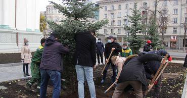 Чебан: В сквере Михая Эминеску посажены деревья.