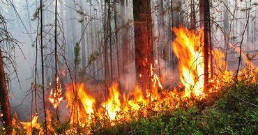 Риск возникновения пожаров в Молдове сохранится до 14 августа.