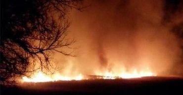 Сильный пожар разгорелся у леса в Новых Аненах.