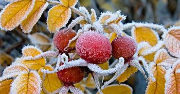 В Молдове ночью ожидаются минусовые температуры.