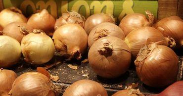 В Молдове снизились цены на лук репчатый.