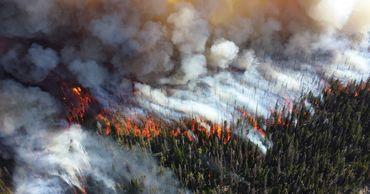 Причиной масштабных лесных пожаров являются частые устойчивые антициклоны.