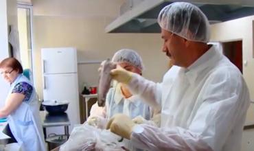 Инспекторы ANSA проверили рыбу, поставляемую в детсады сектора Буюканы