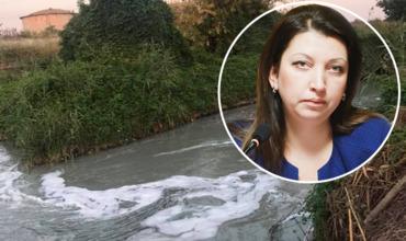 Бывшая глава Apă-Canal назвала возможную причину сильной вони в Кишиневе