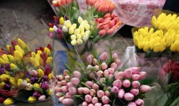 Доходы торговцев цветами выросли в день последнего звонка.