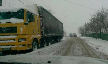 В 10:00 был совершен только один рейс по маршруту Кишинев-Резина с 17 пассажирами.