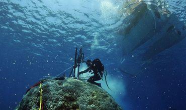 Деятельность человека вызвало рост температур в мировом океане.