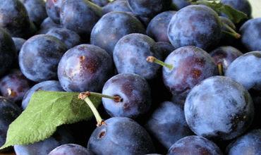 В прошлом году Молдова использовала экспортные квоты только на виноград и сливы.