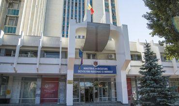 Власти готовят проект закона о борьбе с распространением амброзии.