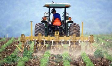Аграрный сектор Молдовы будет модернизирован.