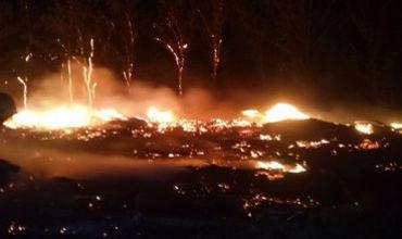 """Напомним, одно из возгораний произошло на Буюканах вблизи Прункул 9 июля, а второе, пять дней спустя, вблизи кладбища """"Дойна""""."""