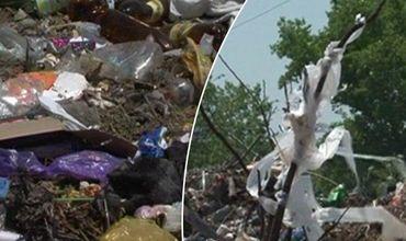 Жители села в Чимишлийском районе требуют решить проблему мусорной свалки.