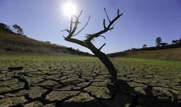 Peste 15.000 de oameni de știință lansează un semnal de alarmă cu privire la starea planetei. Foto: EPA