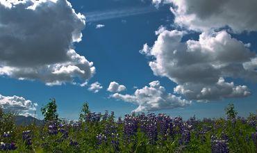 12 июля, в республике ожидается переменная облачность.