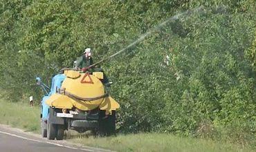 Борьба с вредителями в РМ: Плодовые деревья опрыскивают химикатами